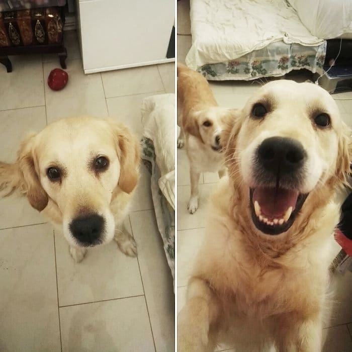 Before And After Being Called A Good Girl Emily