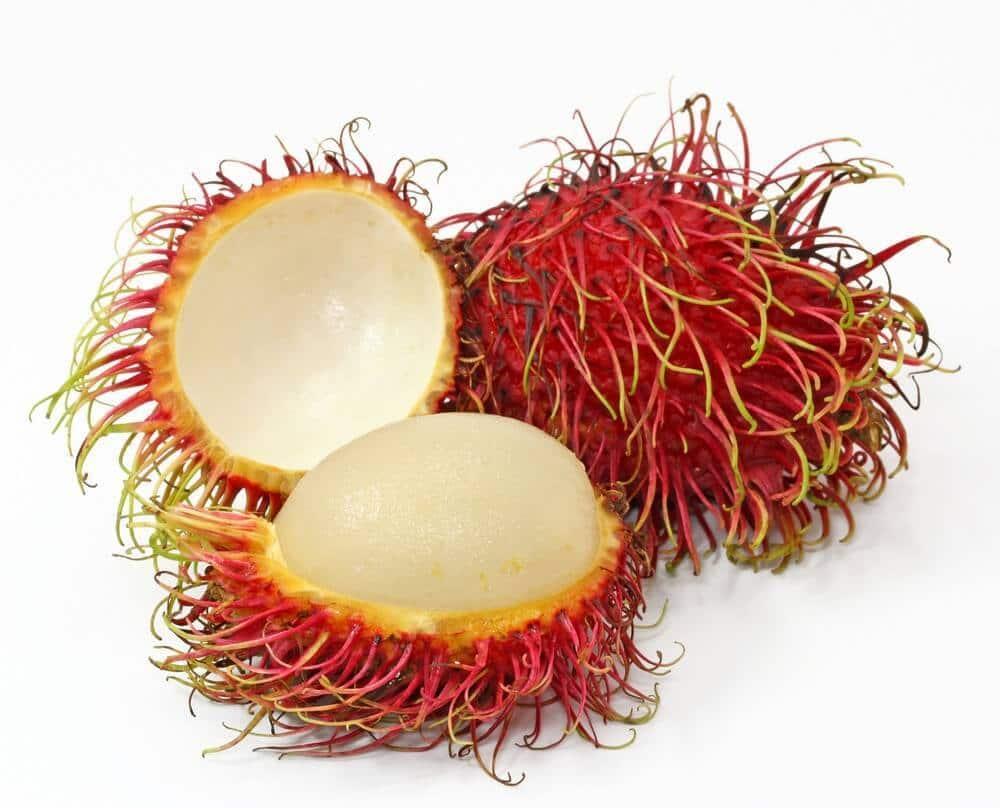 Weird Fruit types 3 (1)