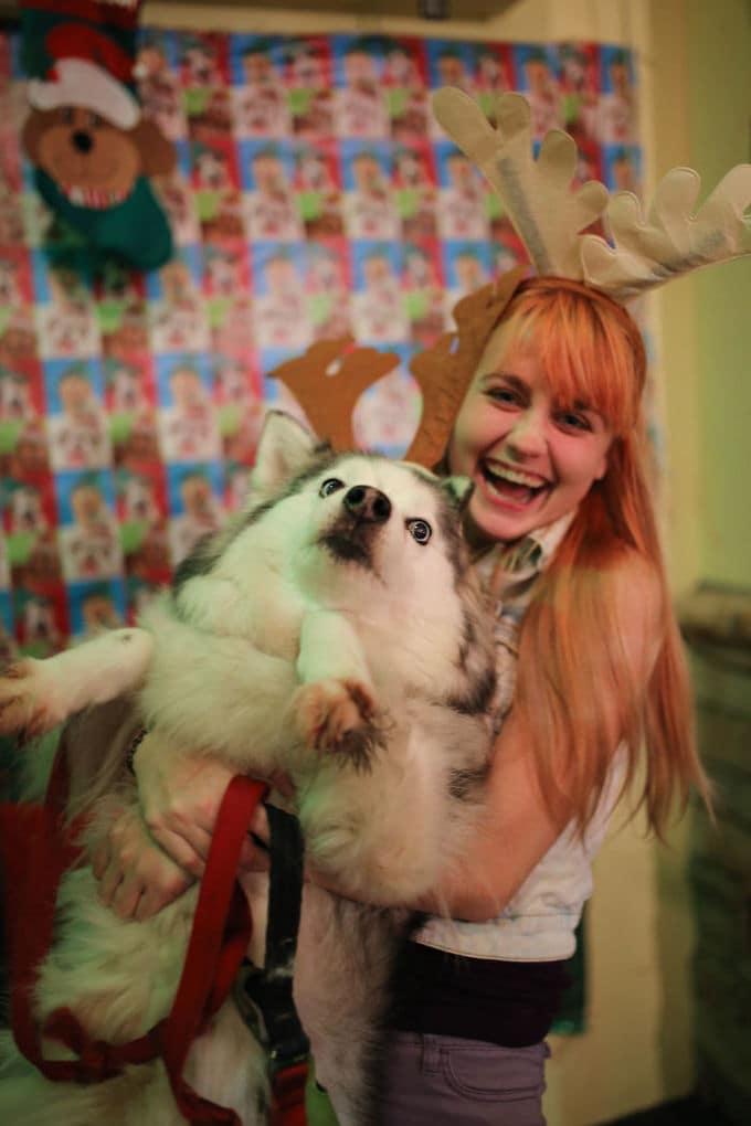 I Tried To Take A Cute Christmas Photo Holding My Dog...