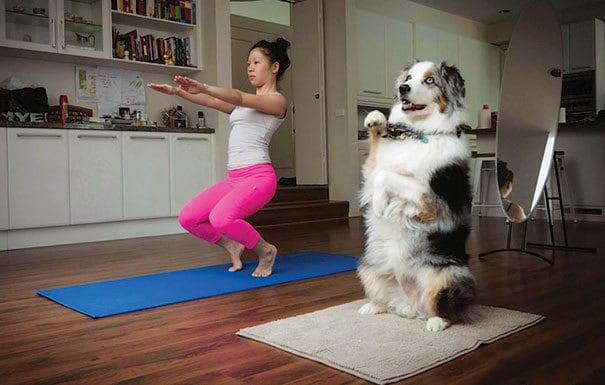 Йог придерживаюсь вместе со своей собакой