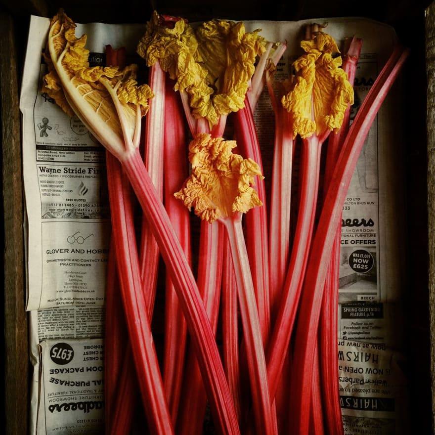 Эндрю Монтгомери От Hampton Wick, Соединенное Королевство, 1-е место, продовольствию