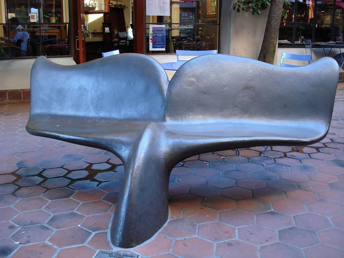 Whale Tail Bench