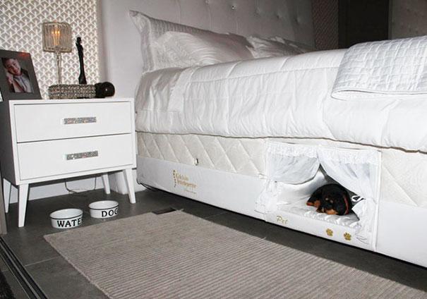 Даже если вы не Let Your Pet подпрыгнуть на кровати, этот отсек решает проблему - Можно, наконец, спать вместе с вашей собакой!