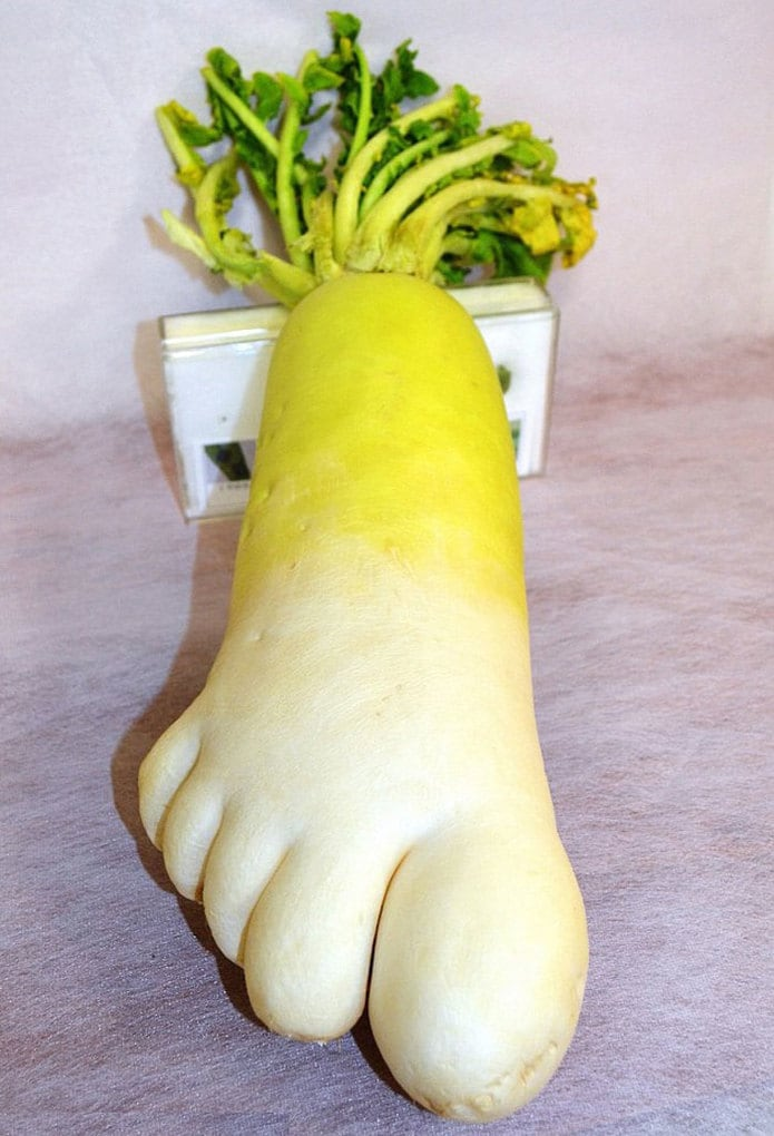 Foot Shaped Radish With Five Toes Goes On Display