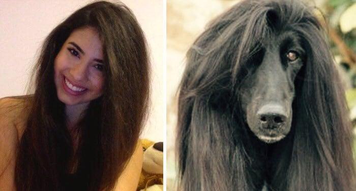 люди похожи на собак 8 (1)