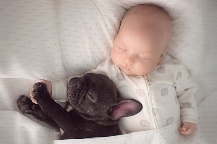 Two Babies Sleeping