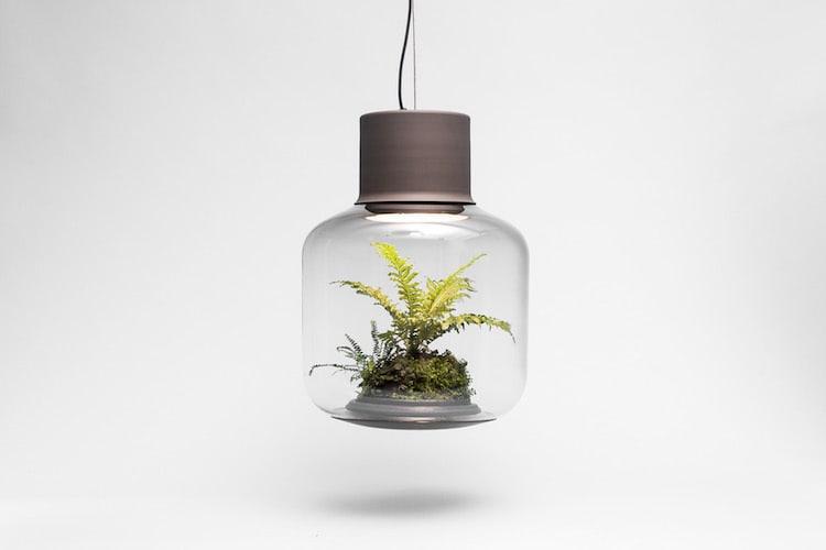 nature-inspired furniture nui studio planter lamp