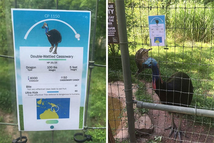 Zookeeper Can't Take It Anymore, Decides To Add Pokemon Go Signs Next To Animals
