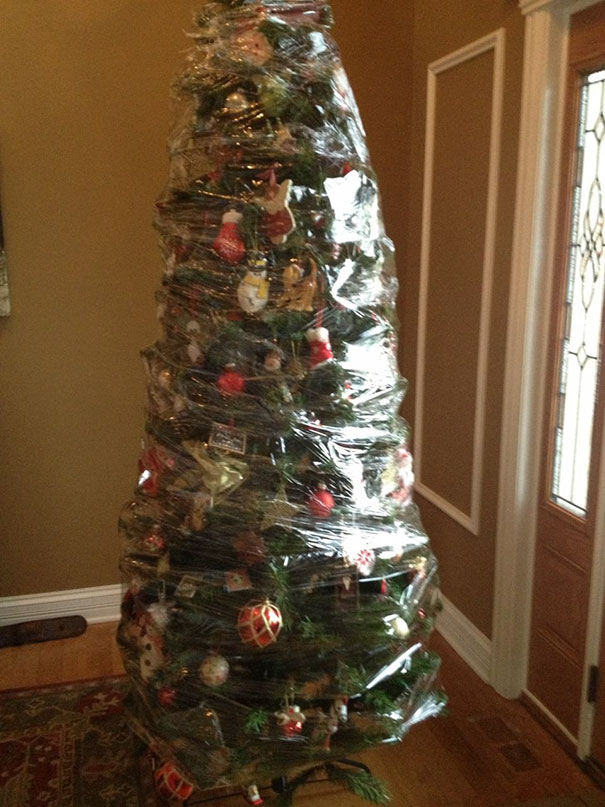 Christmas Tree In Saran Wrap, Cat Proof Level Over 9000