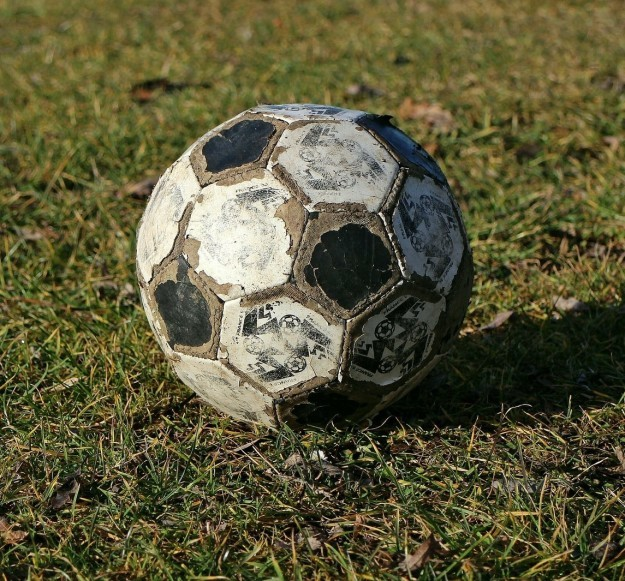The dry, spongy surface of a well-used soccer ball.