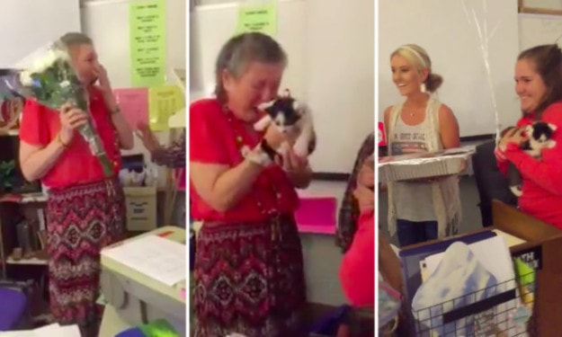 These students who surprised their teacher with two kittens after her cat passed away.