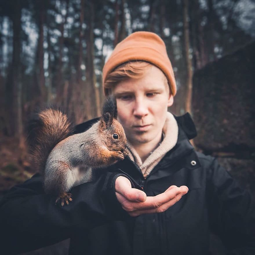дикого животного-Photography-Konsta-punkka-19