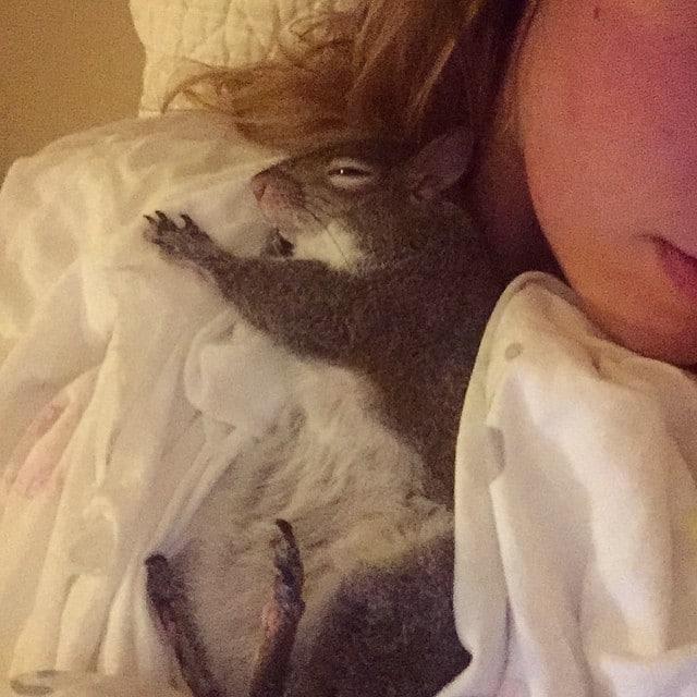 photogenic-rescue-squirrel-jill-2