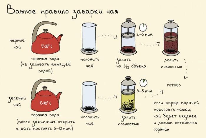 Важные правила заваривания черного и зеленого чая.