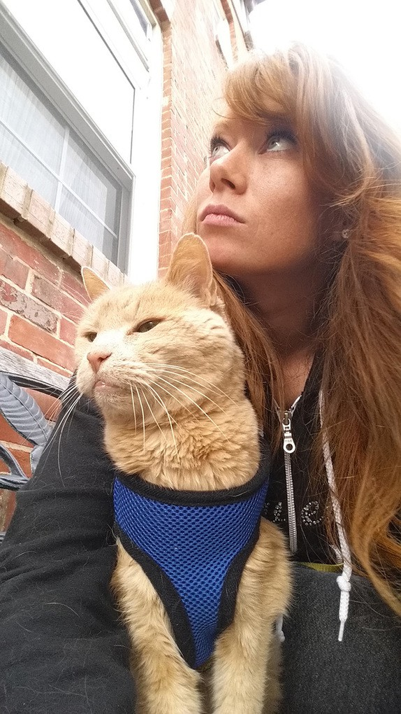 21-year-old-cat-adopted-kidney-failure-tumor-tigger-adriene-buisch-27