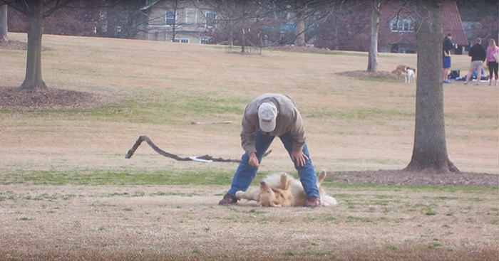 dog-plays-dead-piedmont-park-2