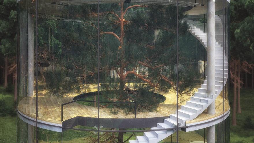 tubular-glass-tree-house-aibek-almassov-masow-architects-9
