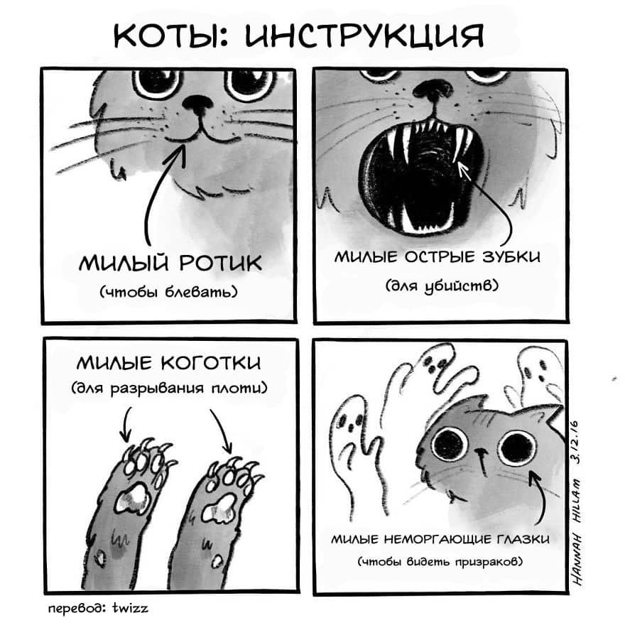 komiks5