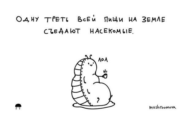 Немного веселых фактов из интернета. факты, познавательно, пруфоф не будет, mushroomova, Животные, Картинки, длиннопост