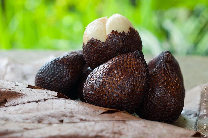 Змеиный фрукт, Снейк фрут (Snake fruit), Салак