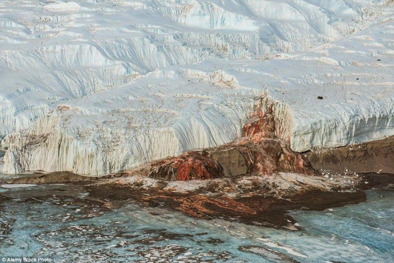 """Выглядит как картина """"Поле боя после сражения в Антарктике"""". оптические иллюзии, природа"""