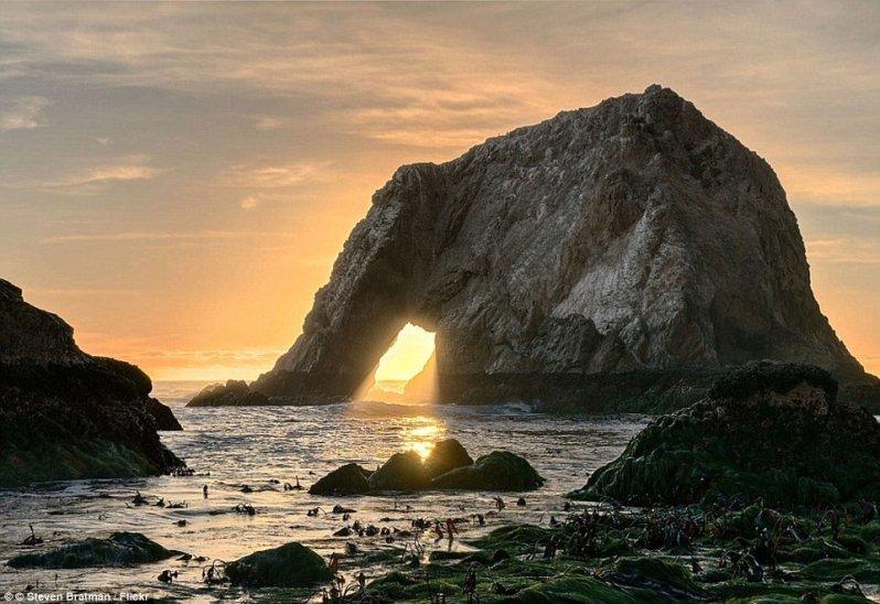 Гигантский каменный слон пьет воду из моря. оптические иллюзии, природа