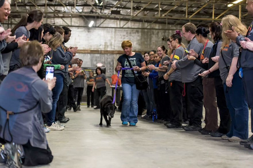 524-cats-dogs-adopted-adoption-event-aspca-9