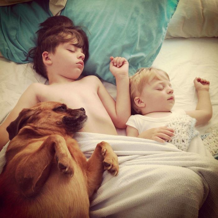 """Sleeping Buddies"" The Best Photo I"
