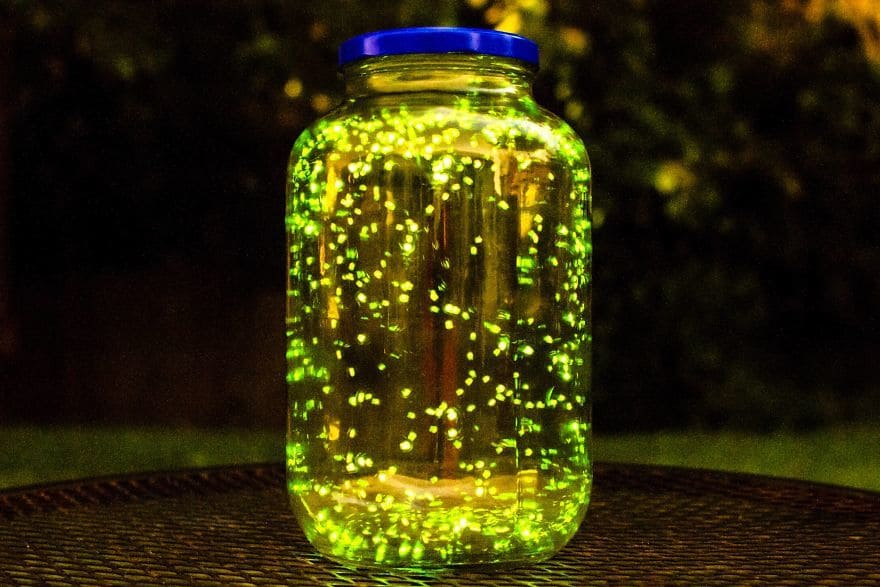 I Put Some Fireflies In A Jar And Did A Long Exposure For 3 Minutes. (Don