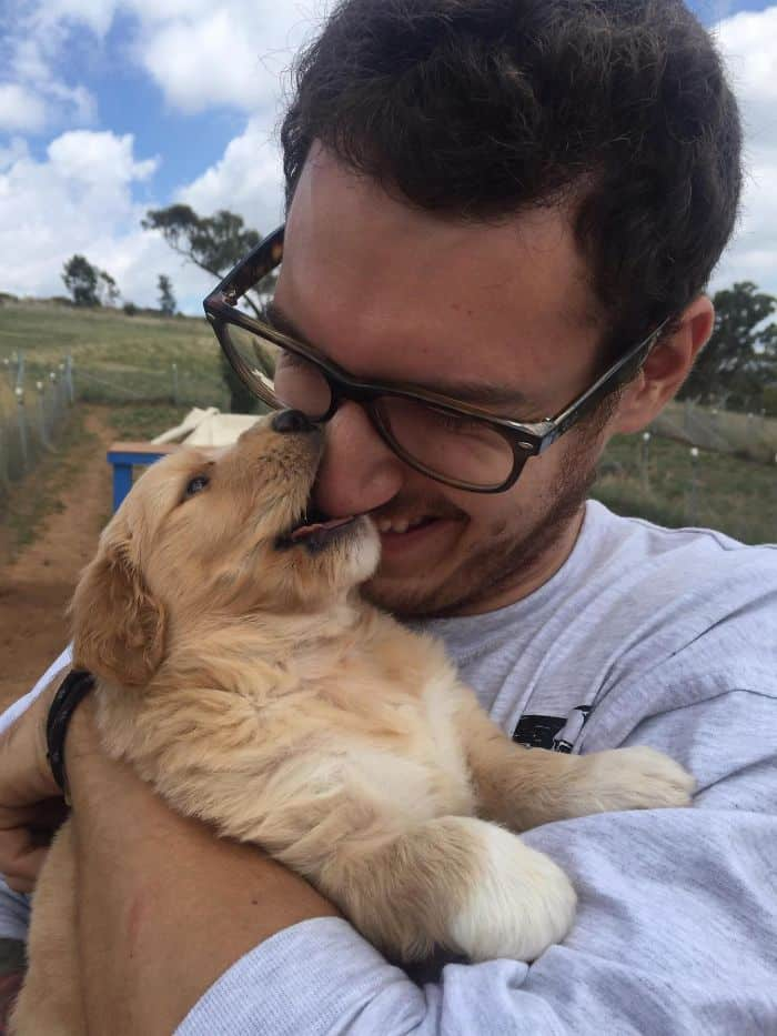 When I Met My Goldendoodle Pup, Boo