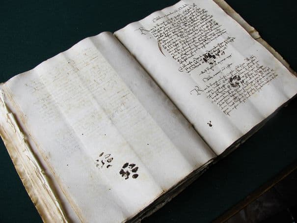 15th Century Cat Leaves Paw Prints On Owner