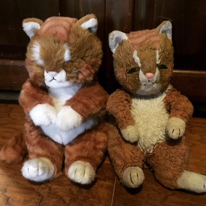 In 1995, My Great-Aunt Gave Me A Stuffed Cat. It Was My Absolute Favorite, And Slept With Me Every Night Through My Childhood. When She Passed, We Found Out She Had Bought An Identical Cat And Kept It In Pristine Condition For Two Decades. The Years Of Love Certainly Left Their Mark.