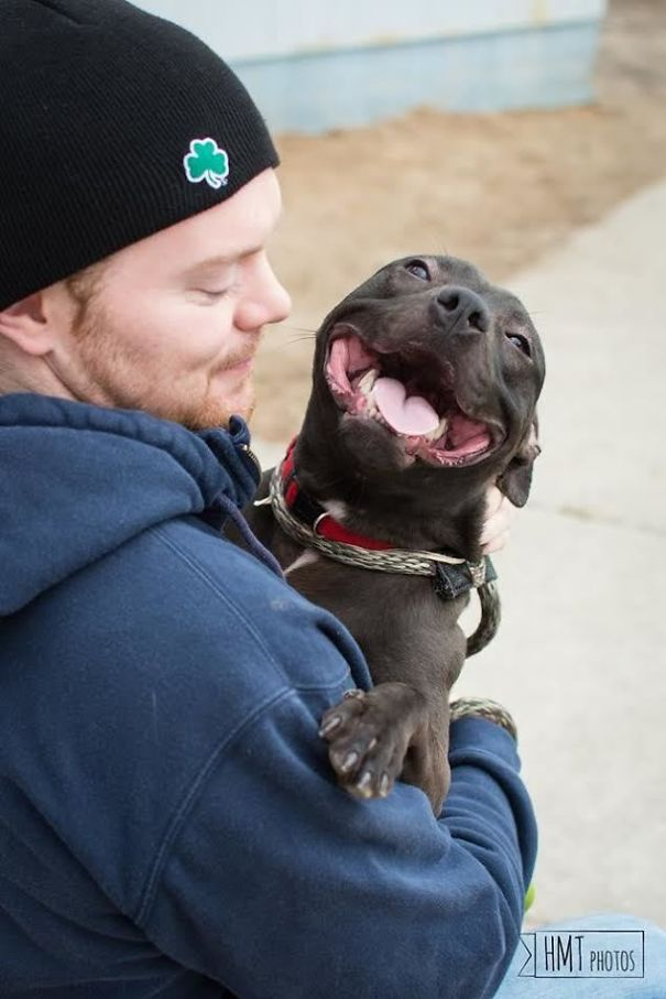 Я работаю в приюте ... Встретил самого счастливого Pup вчера