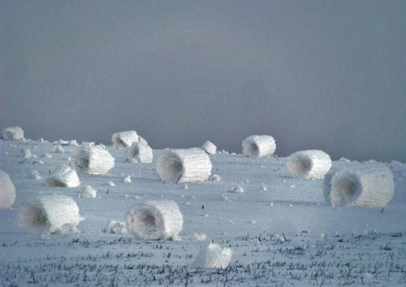 Картинки по запросу снежные рулоны