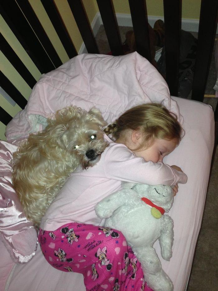 Моя дочь была больна, и наша собака не оставила бы ее стороны