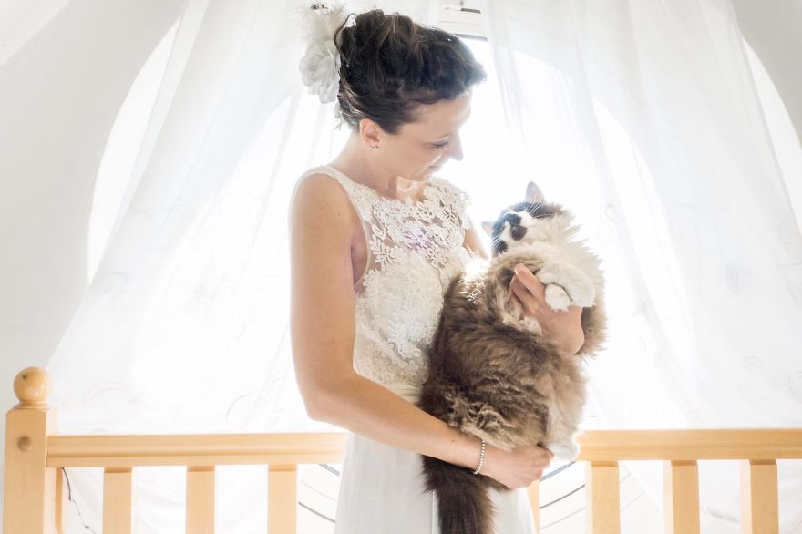 I Do Post-Marriage Private Shooting With Cats