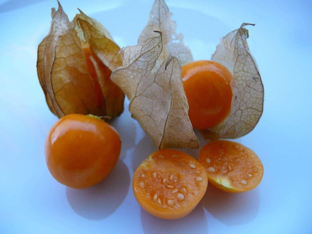 Weird Fruit types 5 (1)