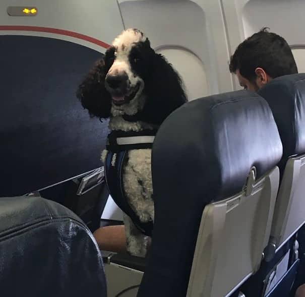 Мой папа просто послал мне этот снимок с его самолета ...