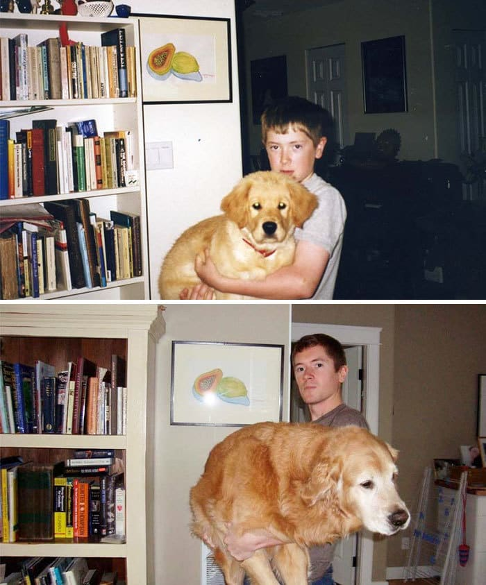 My Dog Midas And Myself After A Decade Together