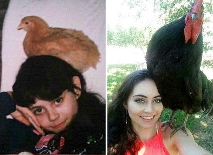 Почти 20 лет спустя, цыплята Still My Best Friend