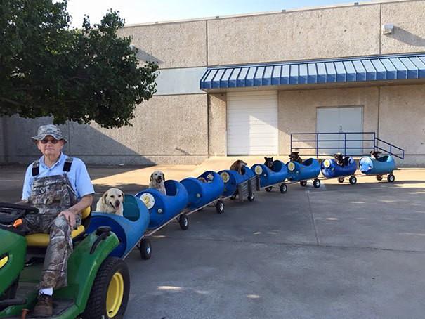 80-летний мужчина построить этот поезд Для того, чтобы спасенных бродячих собак на приключения