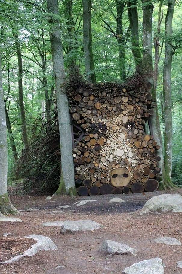 Forest Hog