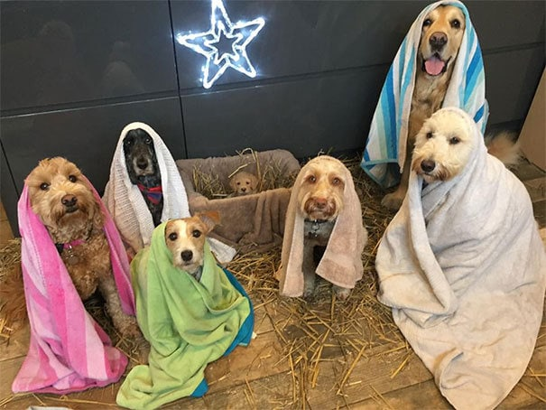 Busy Morning, Practising Our Nativity Play At The Shelter