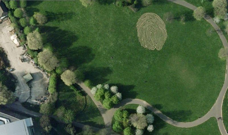 Самый большой в мире отпечаток пальца