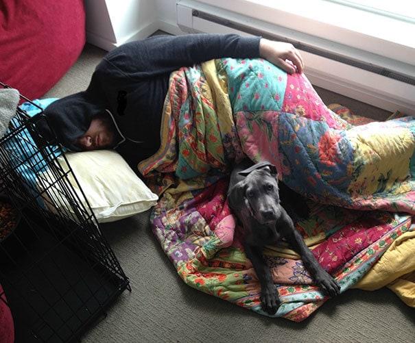 Я сказал моему парню, что новый щенок не был разрешен в постели