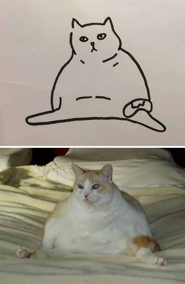 Poorly Drawn Cat