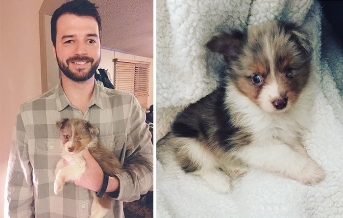 This Guy Only Has Vision In One Eye, So He Bought A One-Eyed-Dog That No One Else Wanted