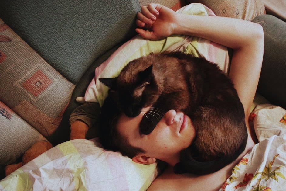 Картинки по запросу мужчина с котом спит