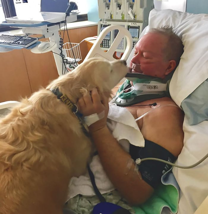 Собака спасает жизнь владельца, надеясь на него почти 24 часа в условиях замораживания