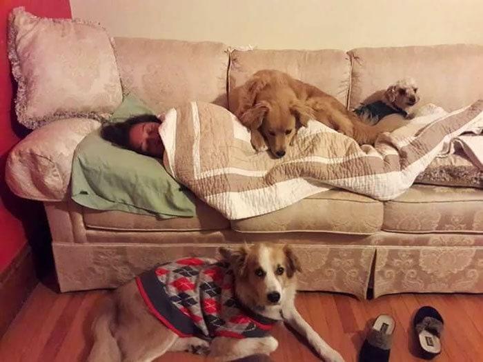 Мои собаки не оставят моей мамы, когда она была больной. Они защищали самого слабого члена их пакета и убедились, что она осталась теплой